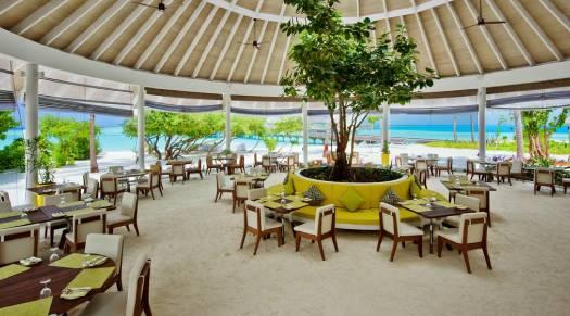 Flavor Zest - Restaurant - Kandima Maldives