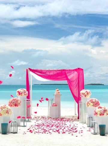 Honeymoon & Weddings